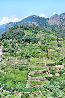 Free Liguria Landscape - Italy Stock Photo - 16973470