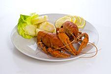 Free Crayfish Dish Royalty Free Stock Images - 16975059