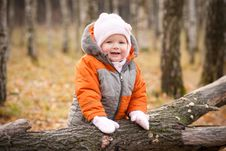 Free Adorable Baby Stay Near Fallen Tree Royalty Free Stock Images - 16975149