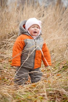 Crying Baby Walking In Autumn Grass Stock Photography