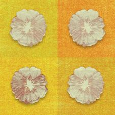 Flower Print On Yellow And Orange Background Royalty Free Stock Photos