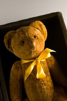 Free Teddy Stock Image - 16976951