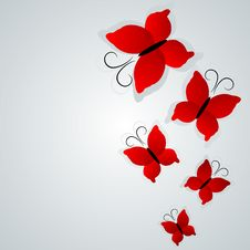 Free Butterfly Background Royalty Free Stock Photo - 16977285