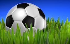 Free Football On Green Grass Royalty Free Stock Photo - 16977645