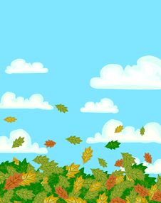 Free Fall Leaves Background Royalty Free Stock Photography - 16978677