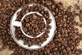 Free Espresso Cup Full With Coffee Beans. Stock Photography - 16982712