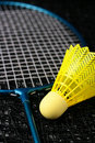 Free Badminton Equipment Stock Photo - 16986520