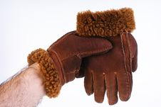 Free Brown Leather Gloves Isolated Royalty Free Stock Images - 16981829