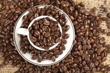 Espresso Cup Full With Coffee Beans. Stock Photography