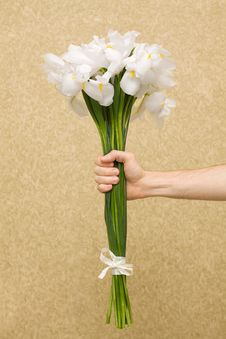 Free Man Holding Flowers Royalty Free Stock Image - 16984586