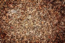 Free Cork Texture Royalty Free Stock Image - 16986116