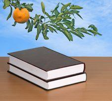 Free Books Royalty Free Stock Photo - 16986615