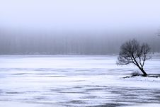 Free Frozen Lake Royalty Free Stock Images - 16988079