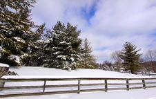 Free Beautiful Winter Scene Royalty Free Stock Photo - 16988165