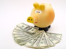 Free Piggy Piggy Bank On White Background Stock Photo - 16989350