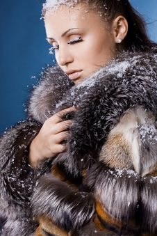 Free Woman In A Fur Coat Royalty Free Stock Photography - 16991567