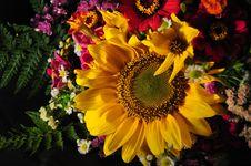 Free Autumn Decor Royalty Free Stock Photos - 16993578