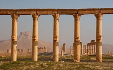 Free Columns In Palmyra Royalty Free Stock Images - 16996829