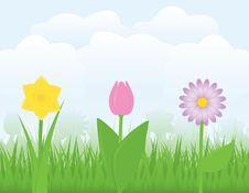 Free Springtime Royalty Free Stock Image - 16997546