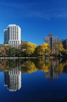 Free Reflexions In Central Park Royalty Free Stock Photography - 16999327