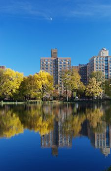 Free Reflexions In Central Park Royalty Free Stock Images - 16999329