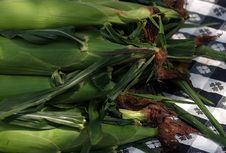 Free Corn On The Cob Royalty Free Stock Images - 177329