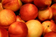 Free Big Red Apples Stock Photos - 178593