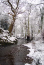 Free Winter Stream Royalty Free Stock Images - 1708009