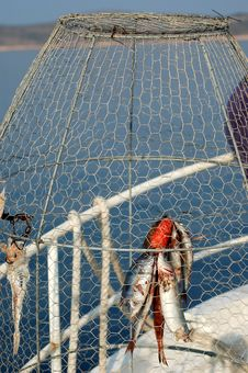 Free Fishing Series - Fish Trap/coop Stock Photos - 1700443