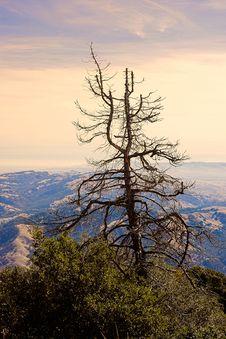 Free Californian Desert Stock Images - 1705954