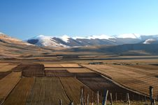 Free Castelluccio / Mountain And Fields Detail Royalty Free Stock Images - 1706539