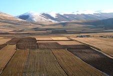 Free Castelluccio / Mountain And Fields Detail 1 Stock Photo - 1706580