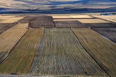 Free Castelluccio / Fields Detail Stock Images - 1706804