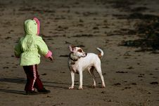 Free Child Playing With Dog On Beach Stock Photography - 1708702