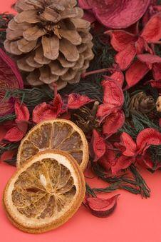 Mandarin,Cloves & Cinnamon Royalty Free Stock Photo