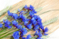 Free Cornflowers And Cereals Royalty Free Stock Images - 17001869