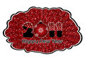 Free New Year Splash Stock Photos - 17002993