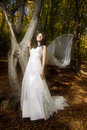 Free Trash The Dress In Autumn Forest Stock Photo - 17005350