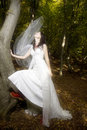 Free Trash The Dress In Autumn Forest Royalty Free Stock Photo - 17005355