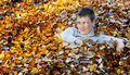 Free Boy In Autumn Leaves Royalty Free Stock Photography - 17007877