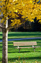 Free Solitude In The Park Royalty Free Stock Image - 17009236