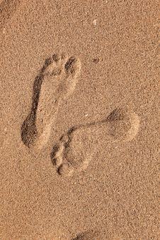 Free Footprints  Of Man At The Beach Royalty Free Stock Image - 17001356