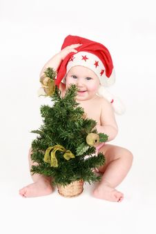 Free The Happy Gnome With A Christmas Fur-tree Royalty Free Stock Photography - 17003307
