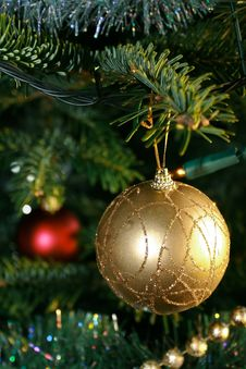 Free Xmas Tree Royalty Free Stock Photos - 17003538
