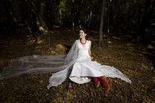 Free Trash The Dress In Autumn Forest Stock Photos - 17005343