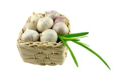 Free Garlic Stock Image - 17008331