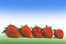Free Strawberries Royalty Free Stock Images - 17012789