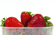 Free Strawberries Royalty Free Stock Image - 17012846