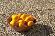 Free Oranges Stock Images - 17012894