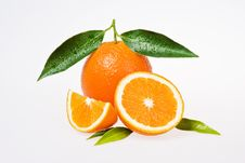Free Orange Stock Images - 17017244
